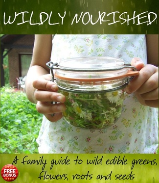 (c) wildly nourished - book cover